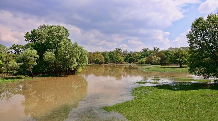 Dreams About Flood – Meaning and Interpretation