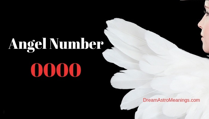 Angel Number 0000 – Meaning and Symbolism
