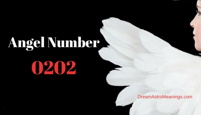 Angel Number 0202 – Meaning and Symbolism