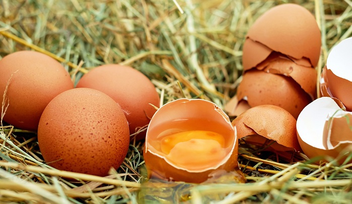 Dreams About Eggs – Meaning and Interpretation