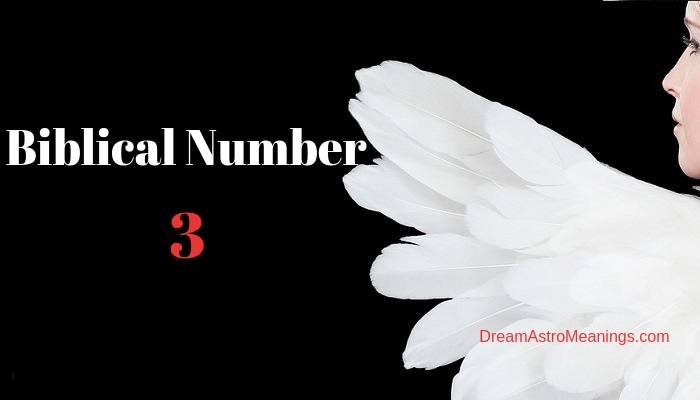 What Does the Number 3 Mean in the Bible and Prophetically