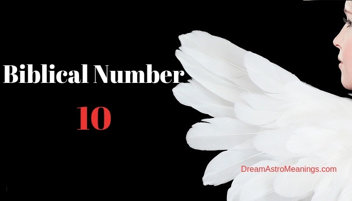 What Does the Number 10 Mean in the Bible and Prophetically