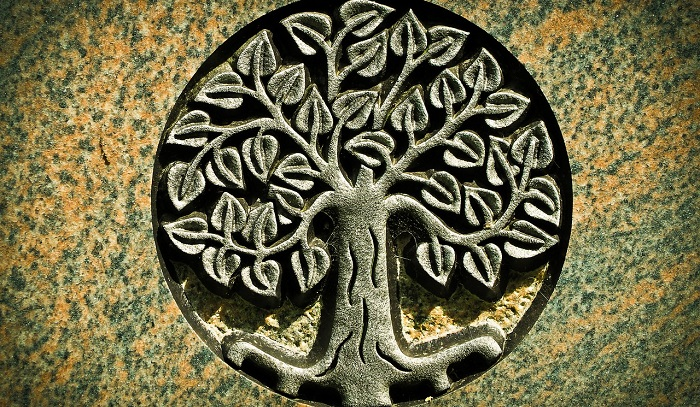 Tree Of Life Meaning And Symbolism The metaphysical meaning of the tree of life is clear — indicating each being is a child of the universe, with a right to because metaphysics ties the natural world with the spiritual, the tree of life in this case represents a cosmic family tree of stores, demonstrating the links between people. tree of life meaning and symbolism