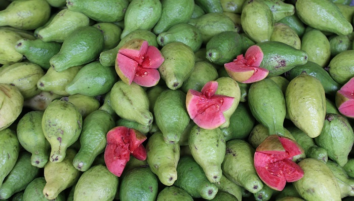 Guava Fruit – Dream Meaning and Symbolism